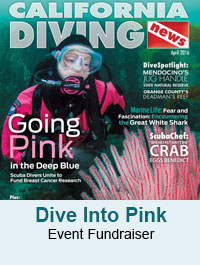 Dive Into Pink
